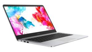 Huawei MateBook D 14 (53010FBW)