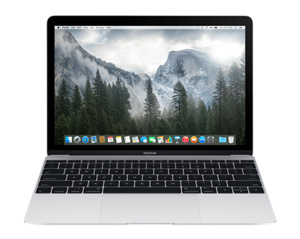 Apple Macbook 2015 MF855F/A - 256 Go